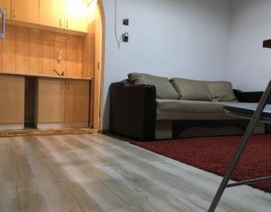 Apartament 1 camera, Motilor, USAMV